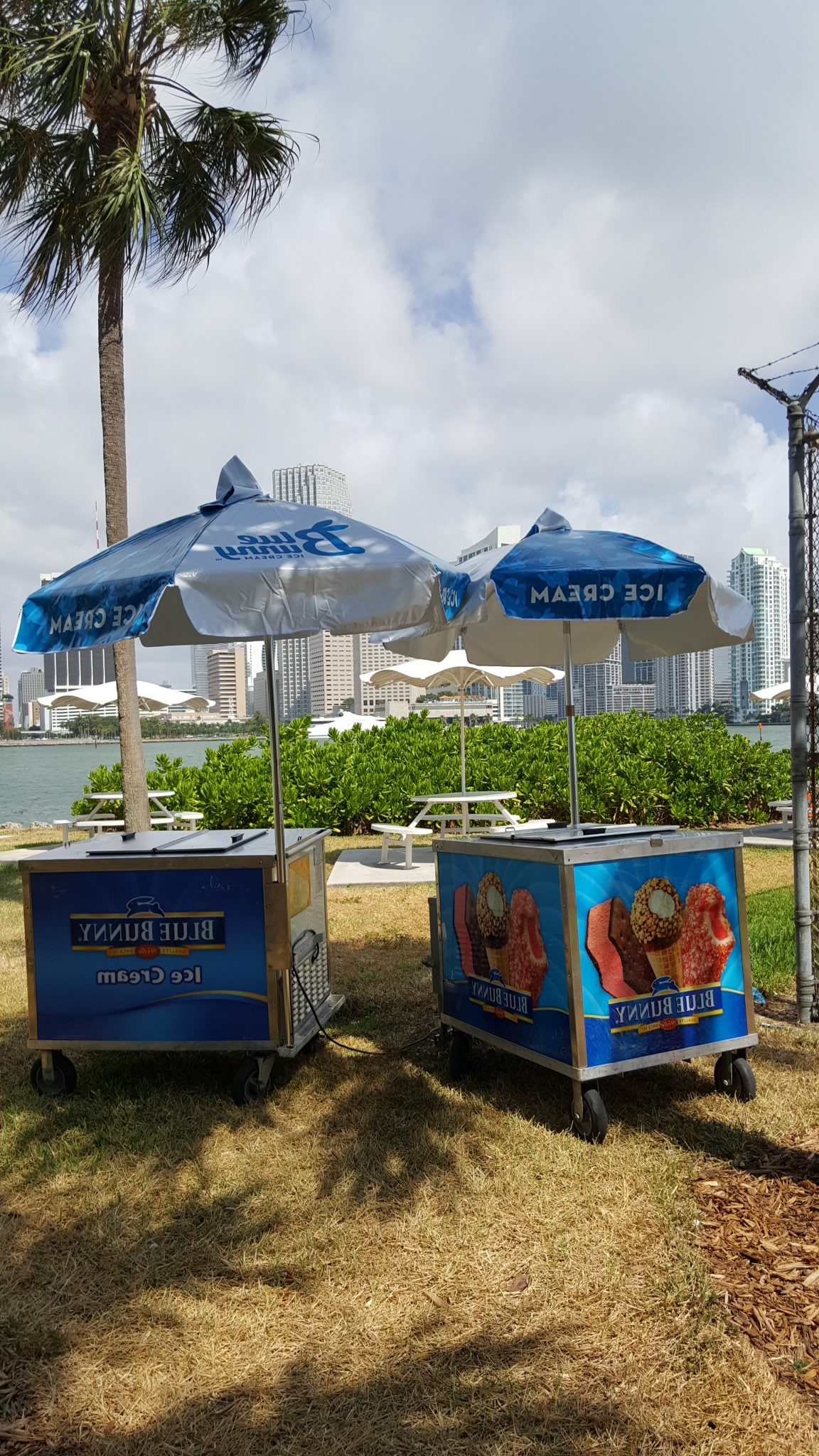 Ice Cream Cart Party Miami Florida
